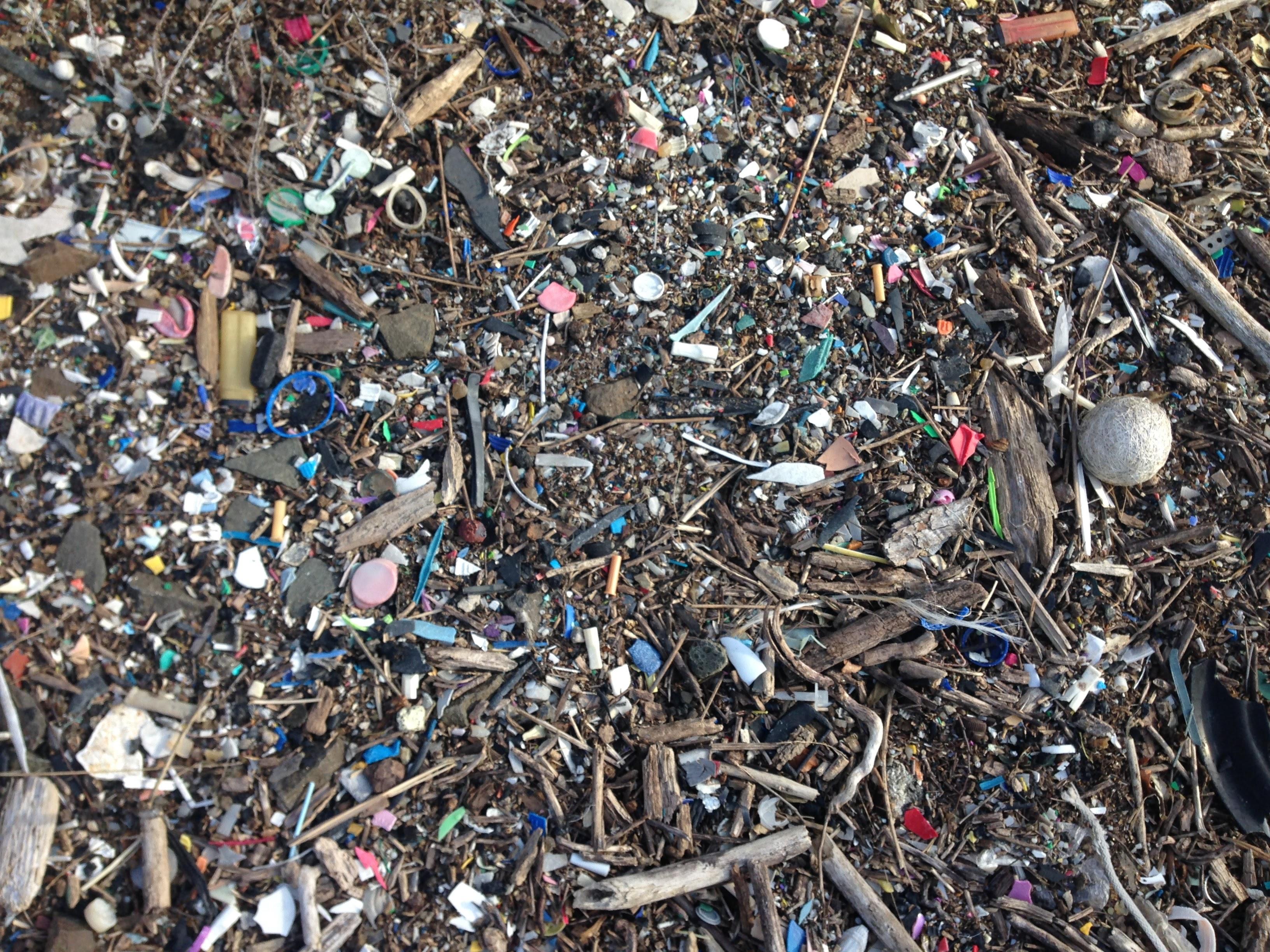 Plastic pollution and debris