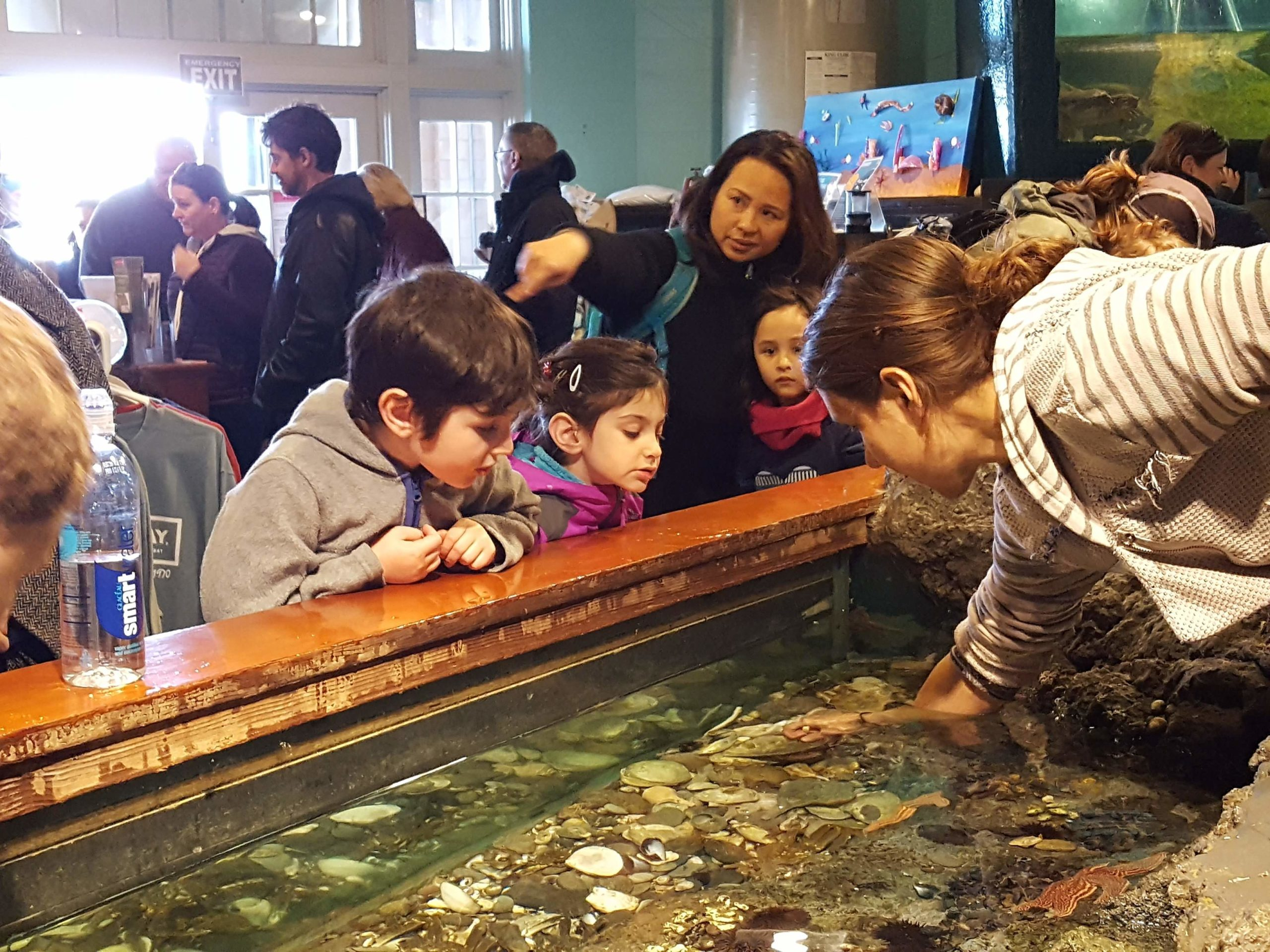Save The Bay's Exploration Center and Aquarium is a hands-on, experiential learning center that delights and inspires thousands of visitors every year.
