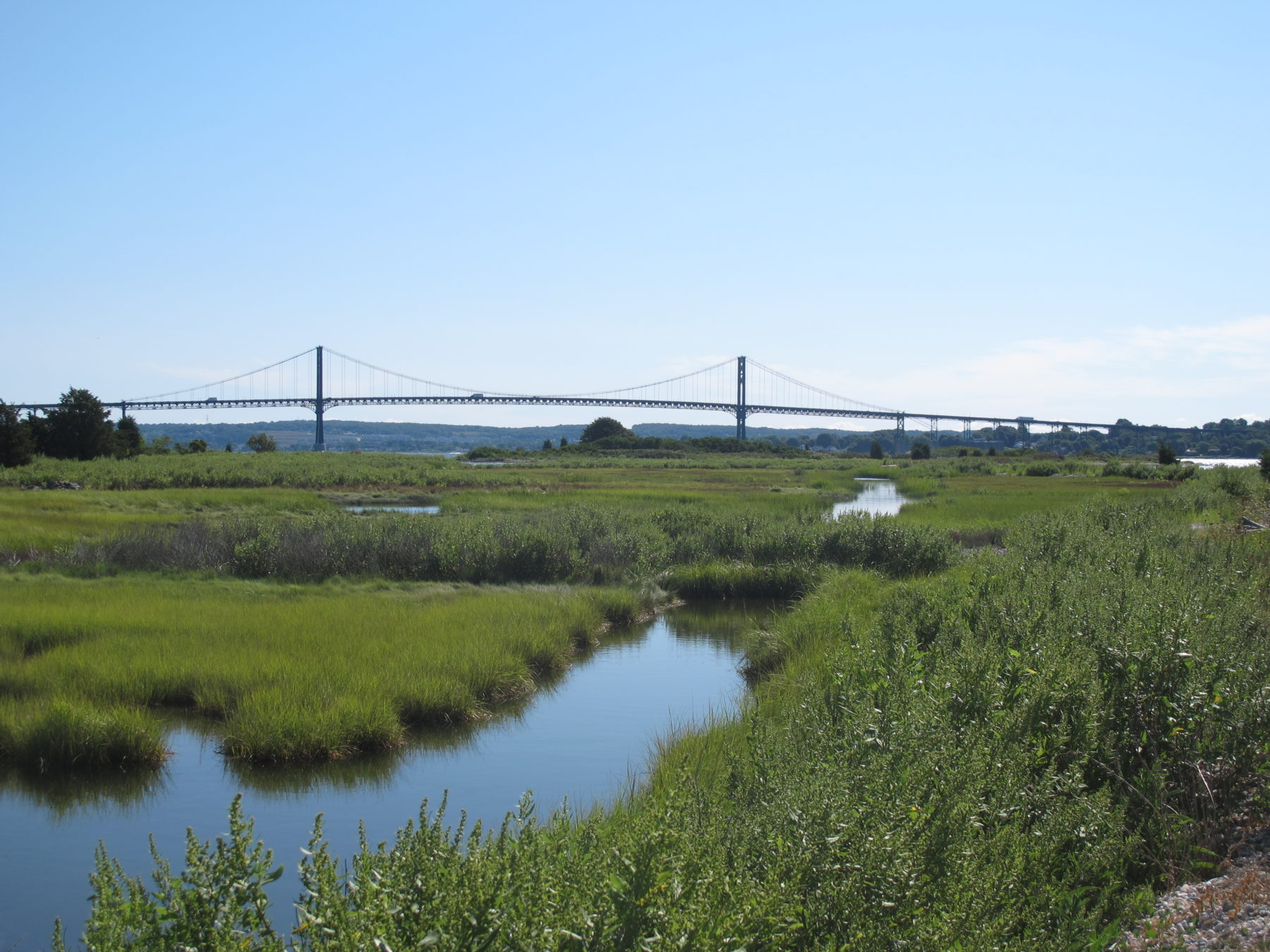 Salt marshes and other coastal buffers offer a natural barrier protecting Narragansett Bay from human activity.