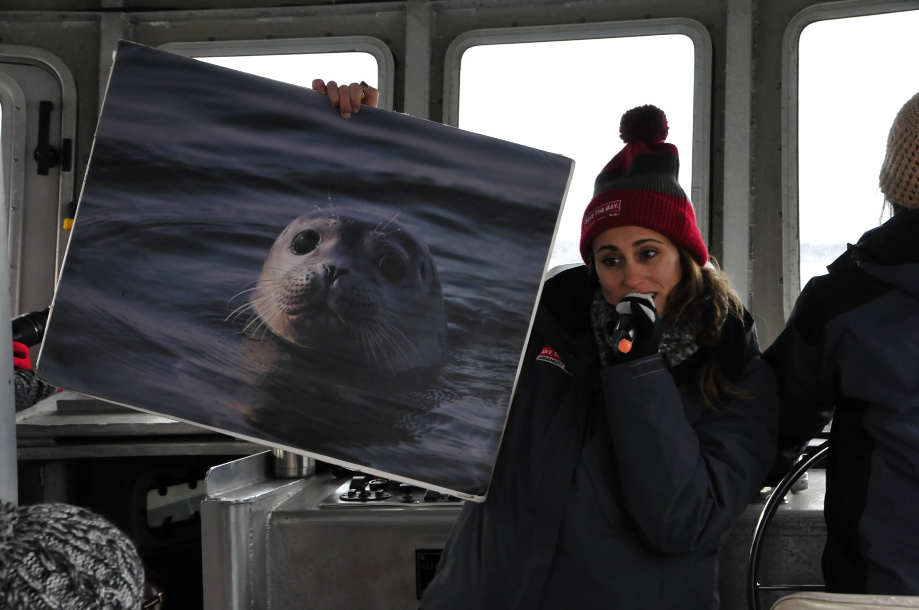 A Save The Bay seal tour