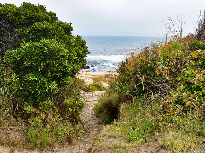 A narrow path between coastal shrubs leads to a rocky coastline. Water and waves are visible past the rocks, and a couple donning blue shirts sits with their backs to the camera, looking at the water.