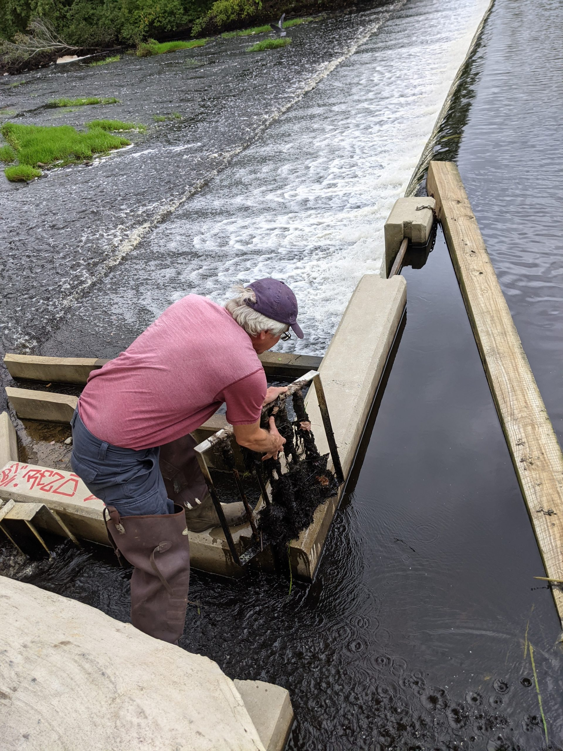 Brad Chase cleans the grate at the top of the fish ladder.