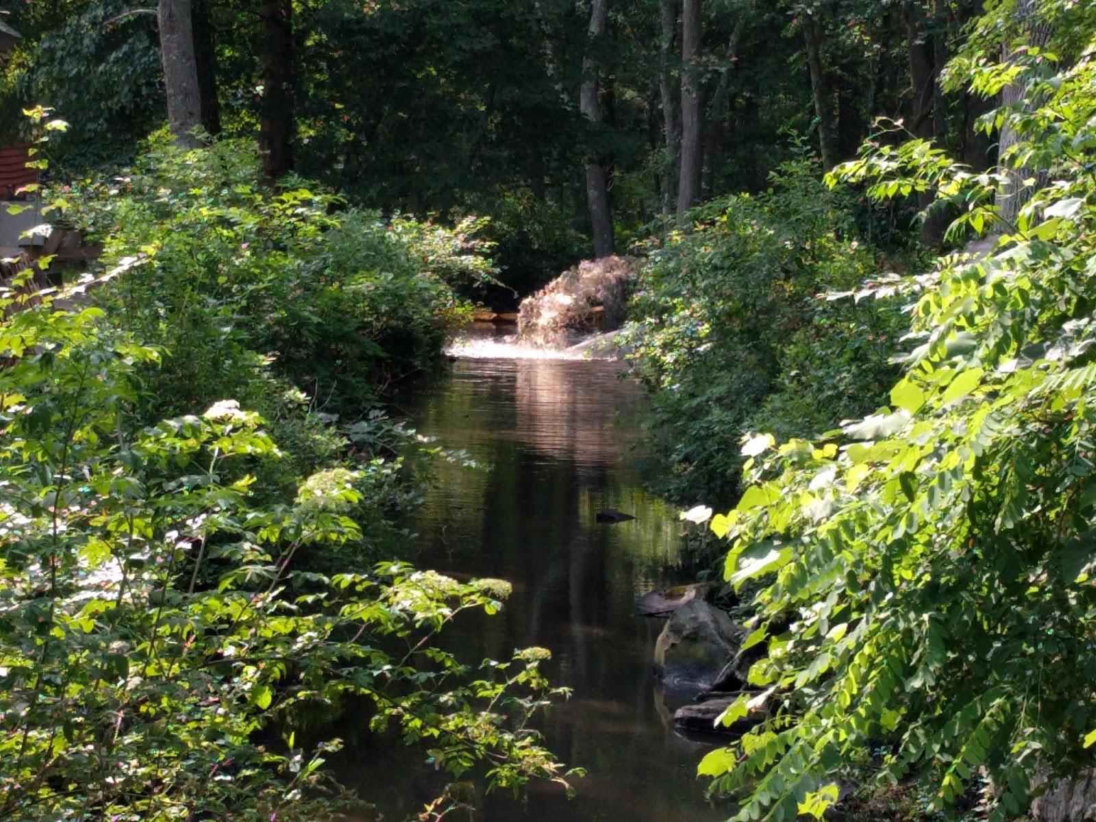 The new, free flowing Mattatuxet River.