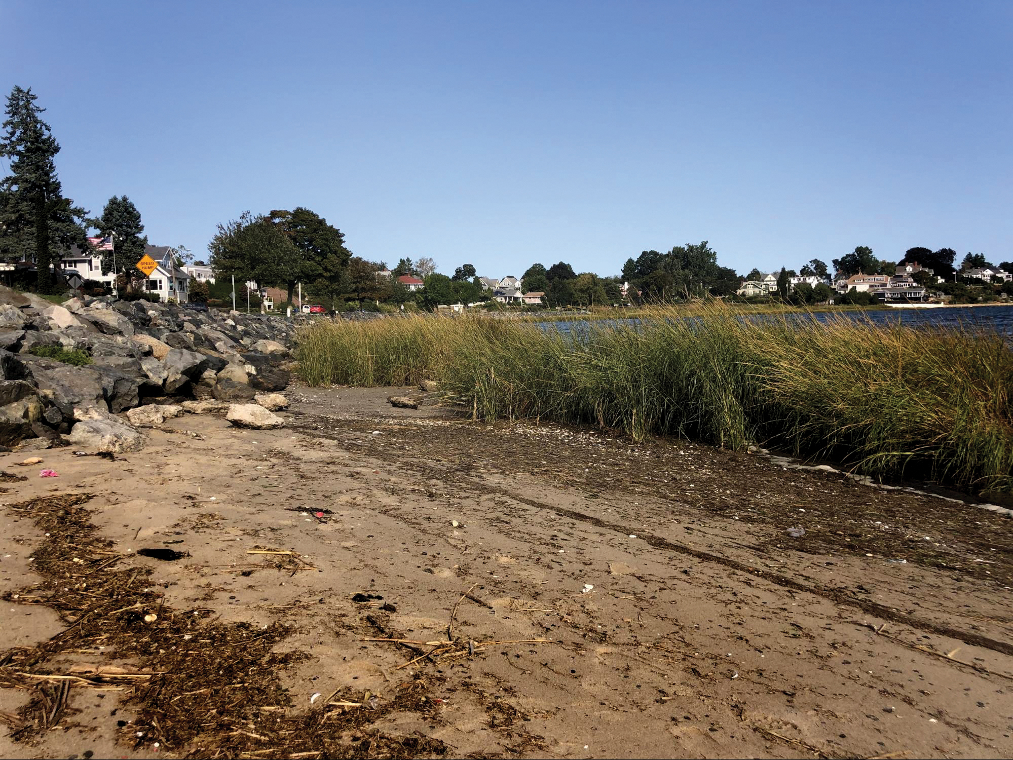 Walls and roads collide with an eroding beach in Stillhouse Cove, depleting horseshoe crab spawning habitat.