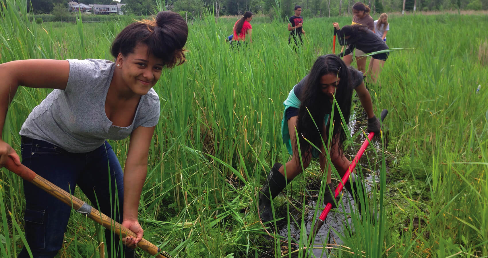 Students help with salt marsh restoration