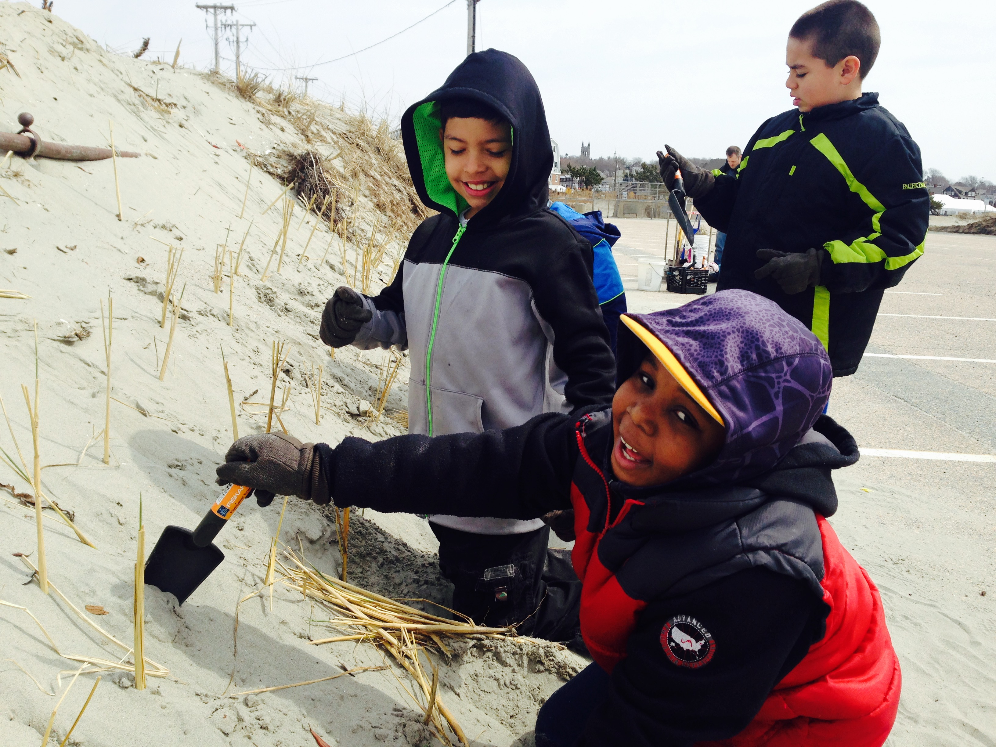 Pell Elementary School students plant dune grasses at Easton's Beach